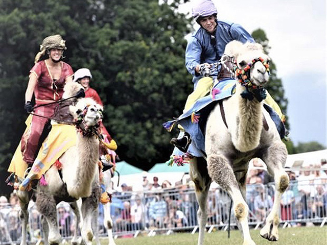 Join us for an afternoon of colourful costume and camel racing in Warwickshire