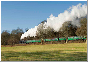 Join us for a day of 9F steam action at the Mid-Hants Railway with 92212 on both goods and passenger, Thursday 14th March 2019